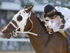Paco rides Where\'s Sterling to win the $250,000 Iselin at Monmouth (8-20-2011)