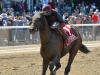 TONALIST WINS THE G3 WESTCHESTER