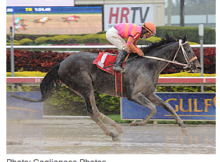 Pants On Fire Hot in Gulfstream Slop