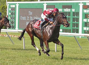 Brandy's-Girl-impresses-in-Crank-It-Up-Stakes---Daily-Racing-Form