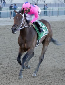 Miss Sky Warrior delivers as favorite in Gazelle