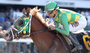 Donegal Moon #6 with Joe Bravo riding won the $150,000 Grade III betfair.com Pegasus Stakes at Monmouth Park in Oceanport, New Jersey on Sunday June 19, 2016. Photo By Bill Denver/EQUI-PHOTO