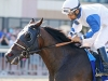 """""""NECK 'N NECK"""" WINS G3 $200,000 GREENWOOD CUP"""